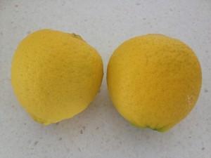 Wedding lemons!