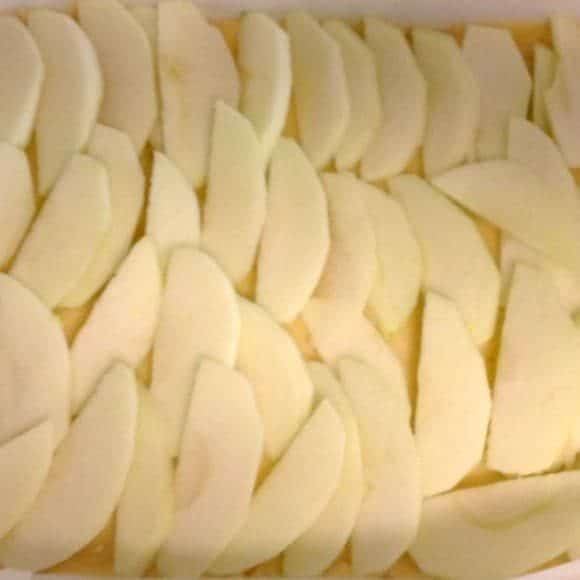 Apple Berry Crumble Slice