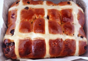 Baked hot cross buns out of the oven.