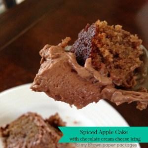 Spiced-Apple-Cake