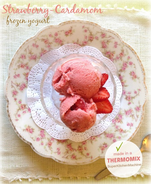 thermomix_ice_cream1