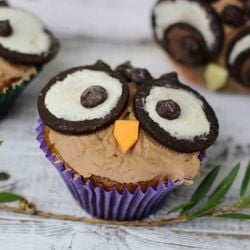 The Cutest Owl Cupcakes