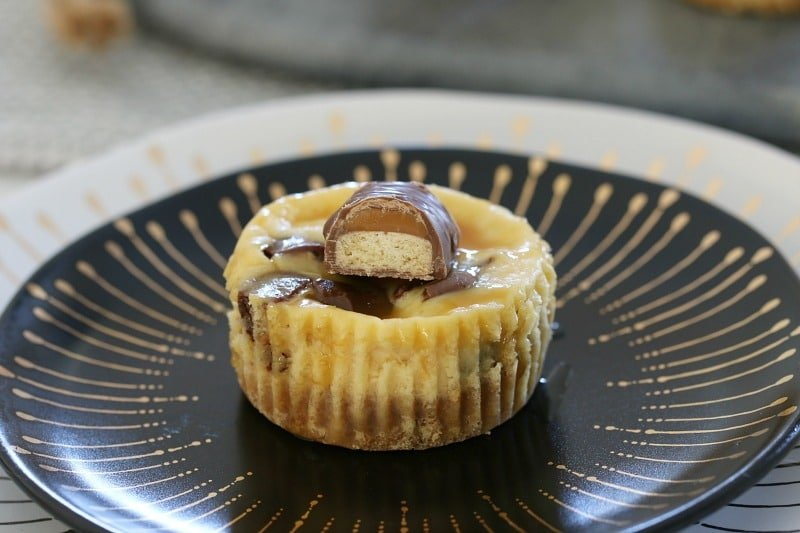 Twix Cheesecakes Cups