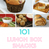 101 Lunch Box Snacks, recipes and free printable