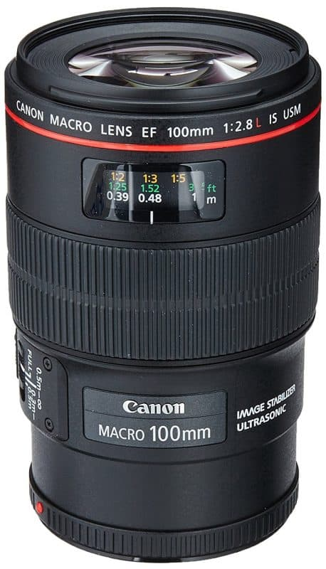 Canon 100mm Macro Lens Best Food Photography Equipment for Food Bloggers