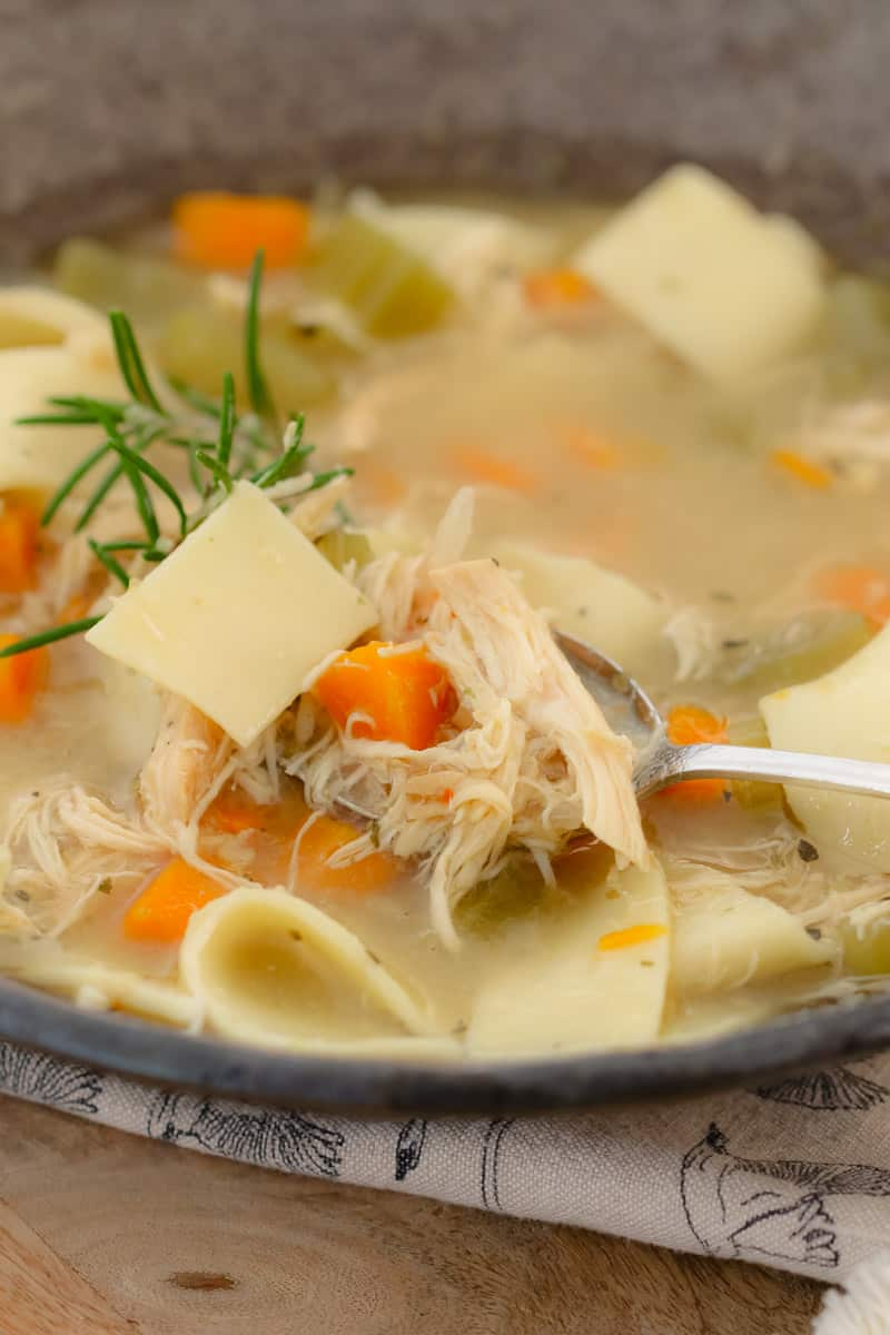 Chicken, carrots and noodles in a bowl of chicken soup.