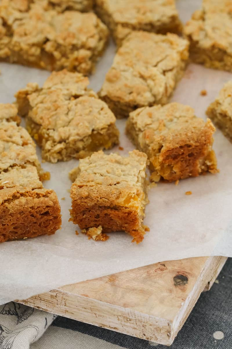 A super easy and budget-friendly Apricot Oat Slice that's perfect for lunch boxes... and takes only 10 minutes to make! Plus it's fussy-kid approved too!