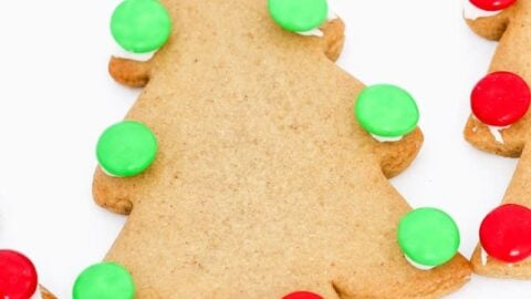 Super Easy Gingerbread Recipe Conventional Method