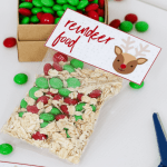 A clear plastic bag filled with rolled oats and Christmas red and green M&Ms.
