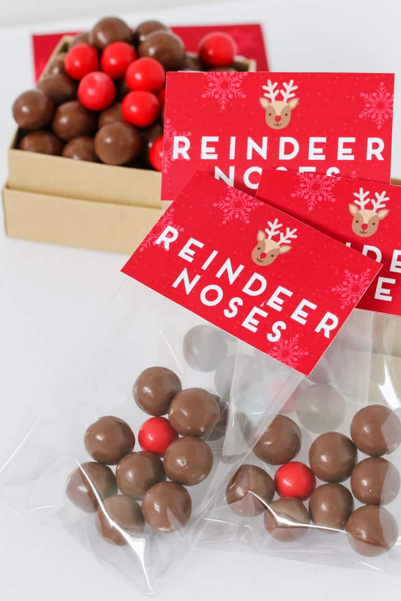 Red Christmas labels with Reindeer Noses printed on them stapled onto clear bags with chocolate inside.