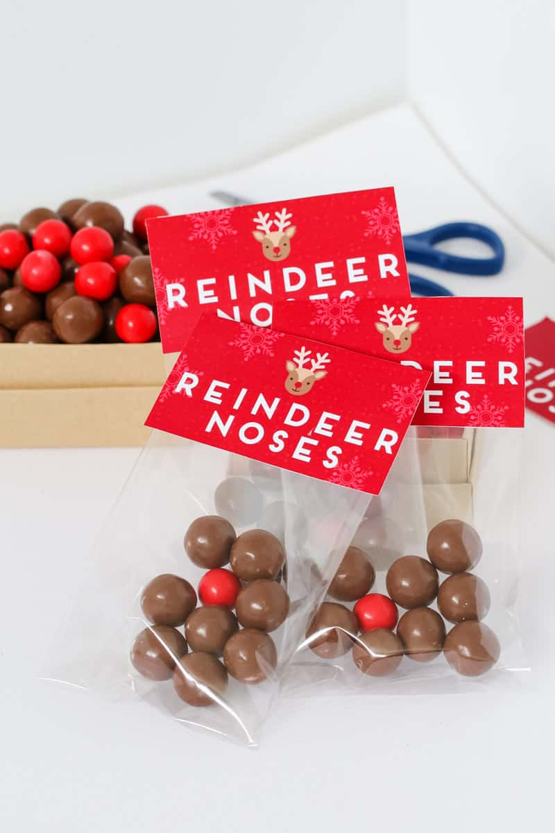 graphic about Pin the Nose on the Reindeer Printable named Reindeer Noses - Cost-free Xmas Printable Reward Bag - Bake