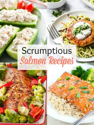Four different salmon dishes plated and served with various garnishes and accompaniments