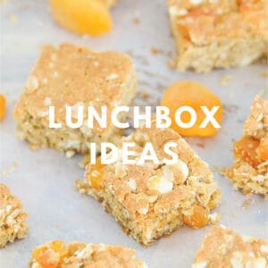 Thermomix Lunch Box Recipes