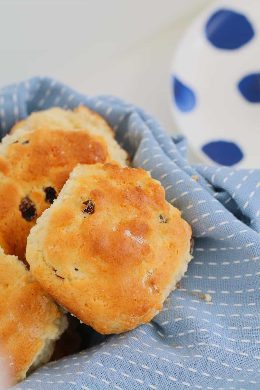 A close up shot of sultana scones wrapped in light blue tea towel